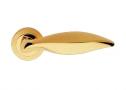 Фурнитура для дверей - Linea Cali -  - DELFINO OM золото/золото матовое 955/103